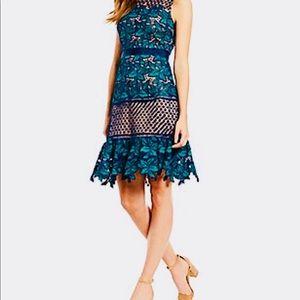 NWT Belle Badgley Mischa A-line dress!